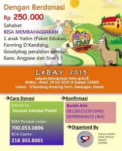 flyer Lebay_2015